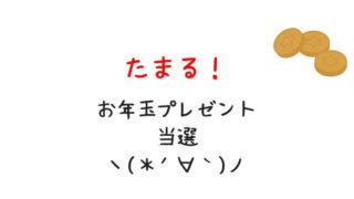 tamaru-otoshidama