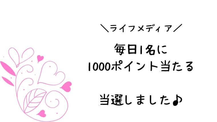 lifemedia-everyday1000p