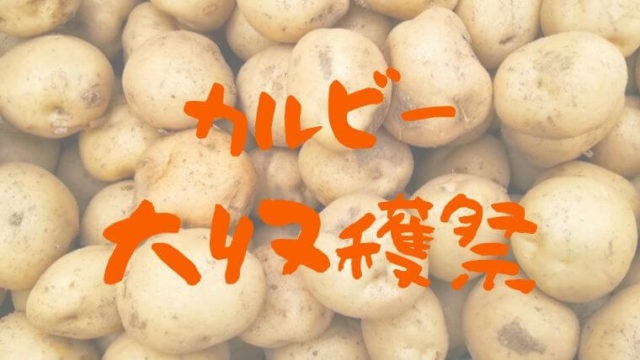 calbee-daishukakusai